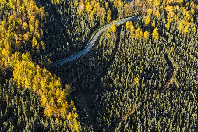 Aerial View Of The Chester Creek Bike Trail Winding Through Spruce And Birch Forests; South-Central Alaska; Anchorage, Alaska, United States Of America