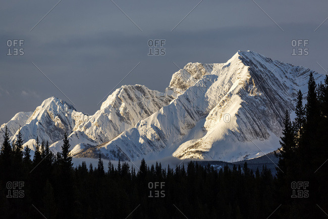Snow Covered Mountains With Early Morning Light, Silhouetted Forest In The Foreground, Blue Sky And Clouds; Kananaskis Country, Alberta, Canada