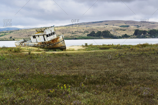 July 23, 2014: Point Reyes National Seashore, Marin County; California, United States Of America