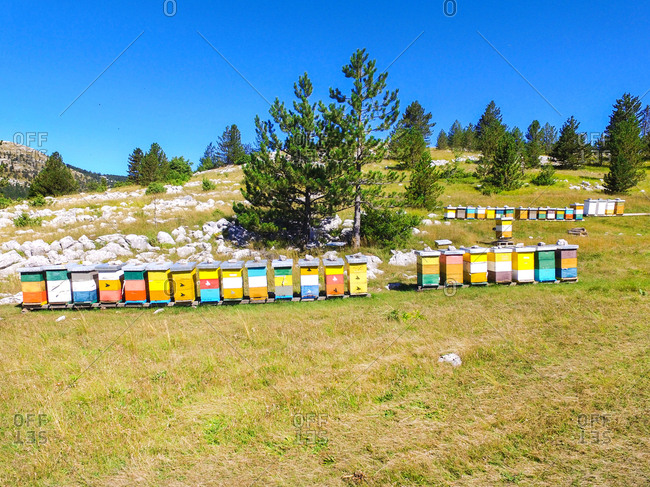 Bee hives on hills of Dinara mountain, Croatia.