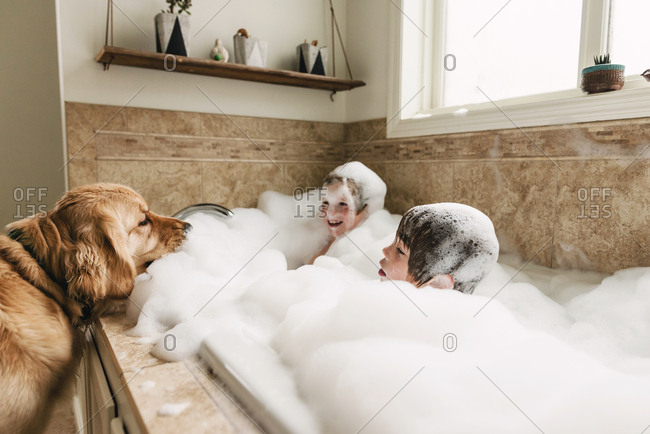 Dog sitting by bathtub while kids play in a bubble bath