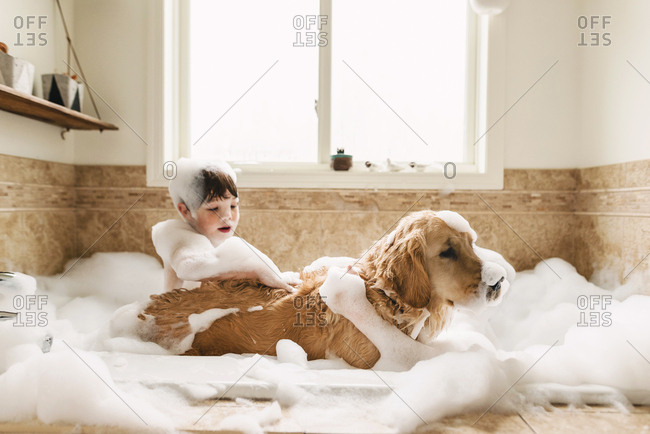 Boy bathing a dog in a bubble bath