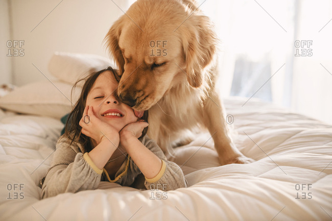 Dog licking little girl's face on a bed