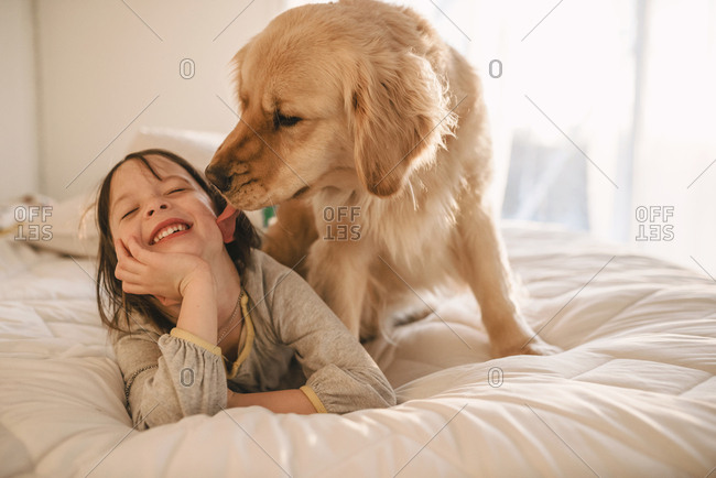 Dog licking little girl on a bed