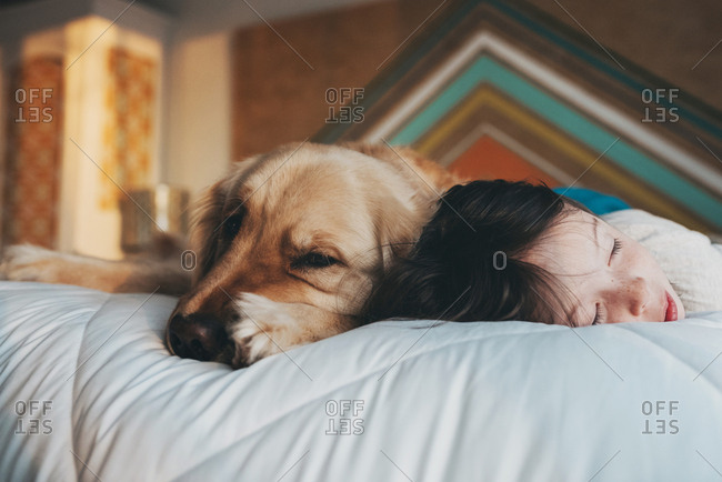 Young girl napping with a dog in her bed