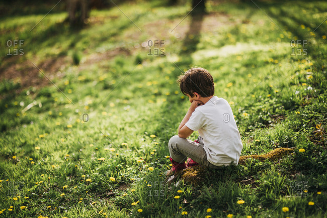 Young boy picking sitting in a field of dandelions