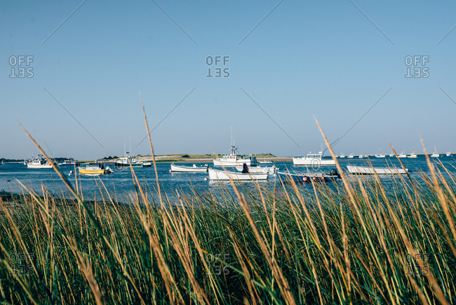 Cape Cod, Massachusetts, USA - September 4, 2017: Beach grass and fishing boats anchored in bay