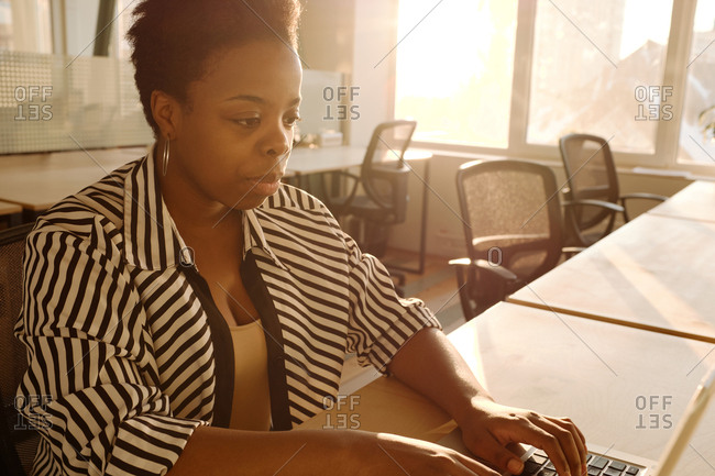 Portrait of good-looking black woman in striped blouse working on laptop while sitting at table in office illuminated with bright evening sunlight