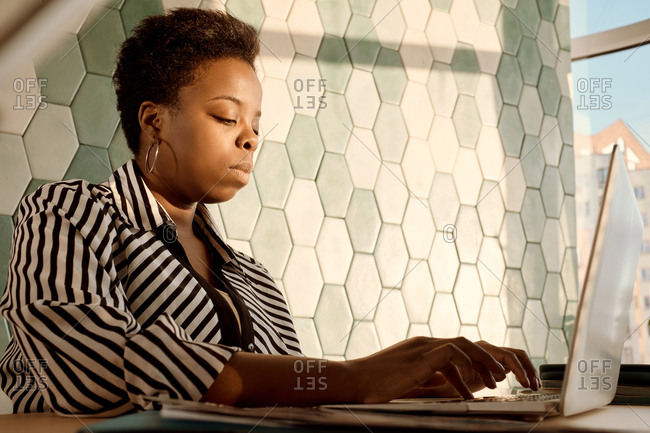 Concentrated good-looking African American woman working on laptop in modern office illuminated with evening sunlight