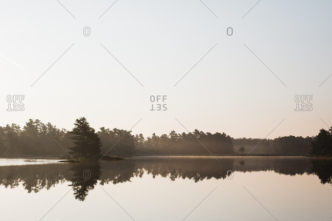 Trees in the early morning mist on Georgian Bay in Ontario, Canada