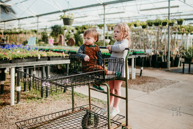 Kids riding in shopping cart in a garden center