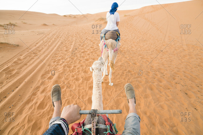Friends riding on camels at Merzouga desert
