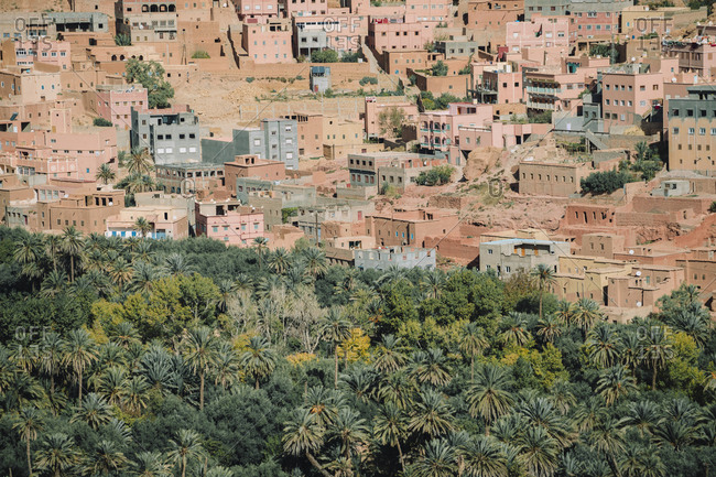 High angle view of houses in village by trees
