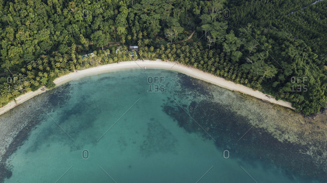 High angle view of trees on island by sea