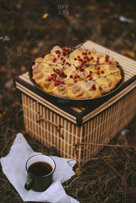 High angle view of rose hips on sweet food with black coffee on field