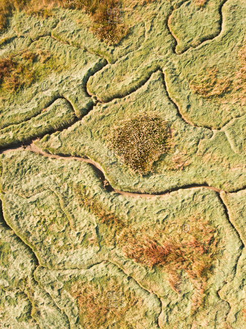 Abstract aerial view of river landscape in the Netherlands.