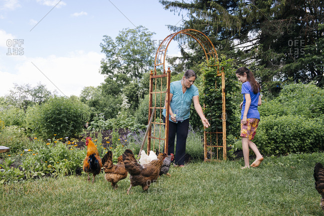Mother and daughter feeding chickens on field at farm