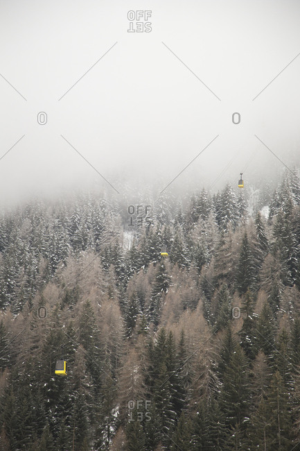 Fog above trees in La Thulie, Italy