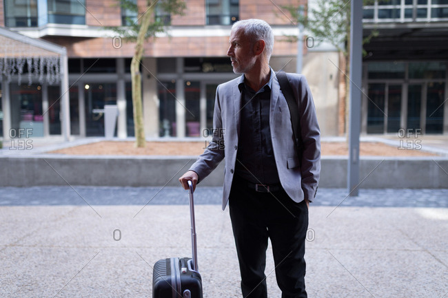 Businessman entering the hotel with luggage