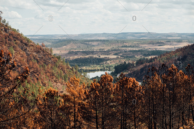 Landscape with burned forest and a view to a river, Portugal