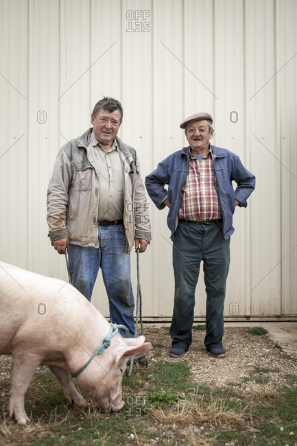 Lalbenque, France: July 28, 2012: Kiki the pig, owner Paul Pinsard (l) and Michel Astruc pose for a photo after a truffle hunt