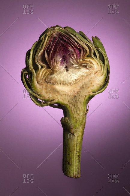 An artichoke half in mid-air on a purple background