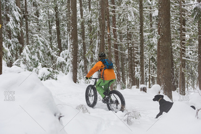 Man riding bicycle with his dog on a snowy landscape during winter
