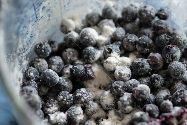 Wild organic blueberries covered with flour