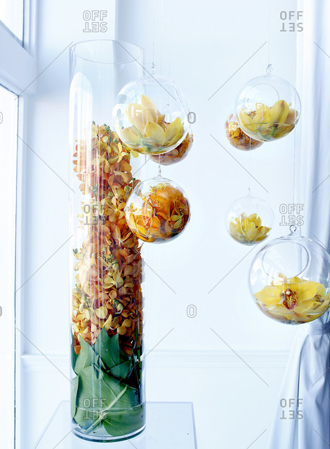 Yellow flowers in a glass vase and hanging bulbs