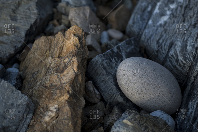 Distinctive rounded rock sitting among others