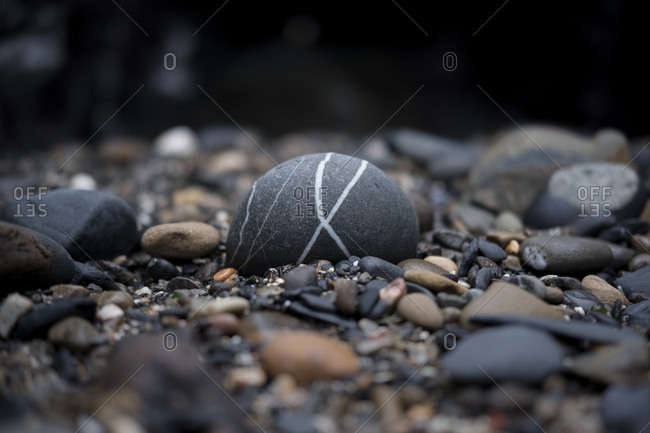 Black rock with distinctive white lines sitting on the seashore