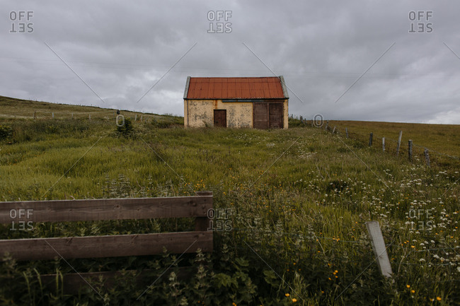 Small weathered building in overgrown countryside field