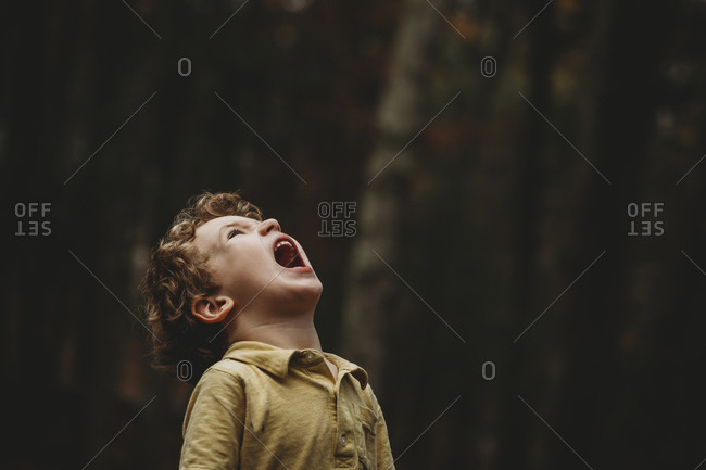 Playful boy with shouting while looking up at park