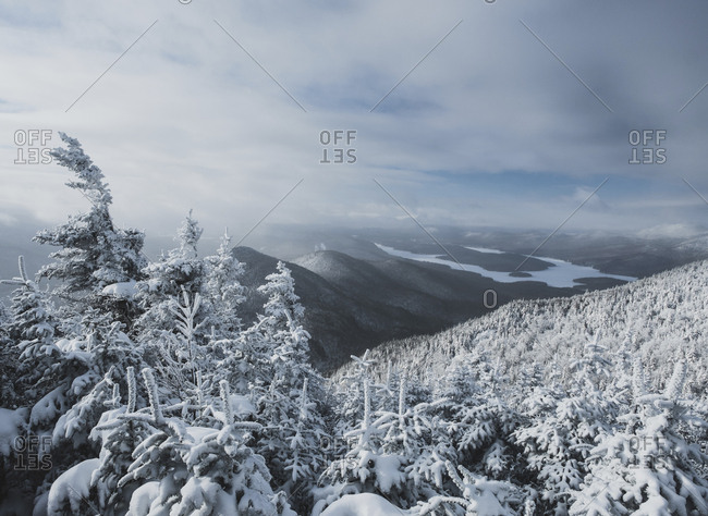 Idyllic view of snow covered trees against cloudy sky at forest
