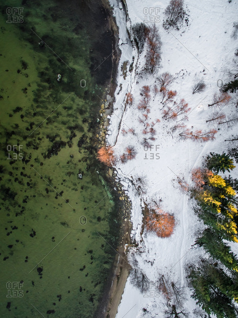 Aerial view of the snowy coast and green sea of Estonia