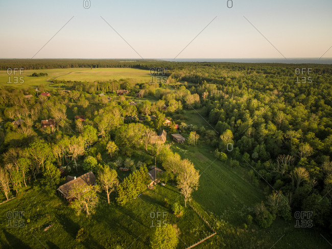 Aerial view of forest in countryside in Estonia