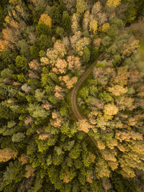 Aerial view of a curvy empty road crossing a colorful forest in Estonia