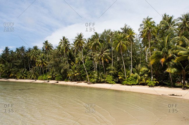 Beach and palm trees on the island of Koh Kood, Thailand
