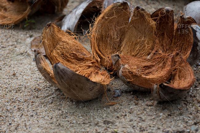 Coconut shells in Koh Samui, Thailand