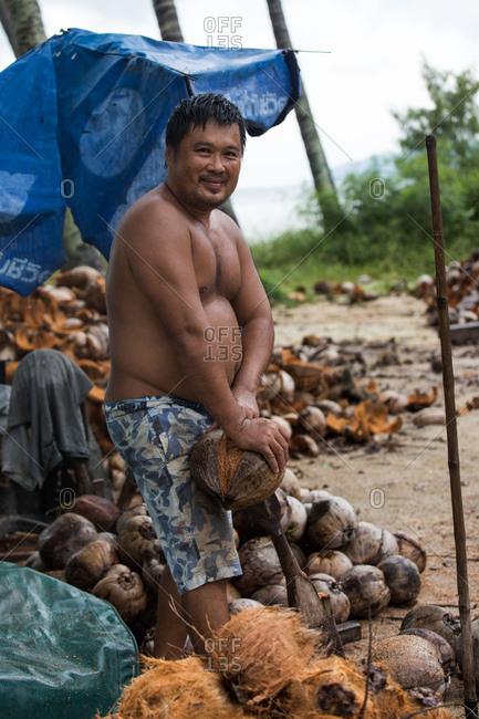 Koh Samui, Thailand - October 7, 2017: A man strips coconuts in Koh Samui, Thailand