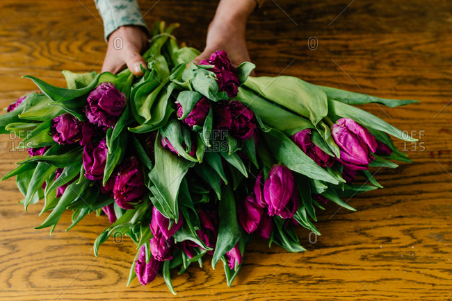 Hands holding fresh bouquet of lilac tulips on the table
