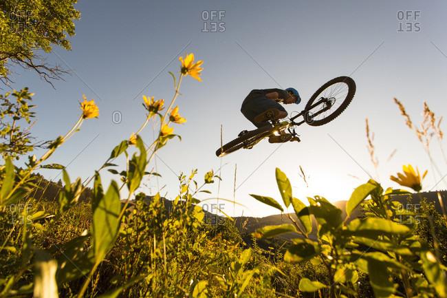 Mountain biker doing stunt in mid-air, Park City, Utah, USA