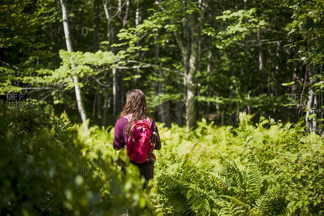 Woman hiking in forest in Acadia National Park, Bar Harbor, Maine, USA