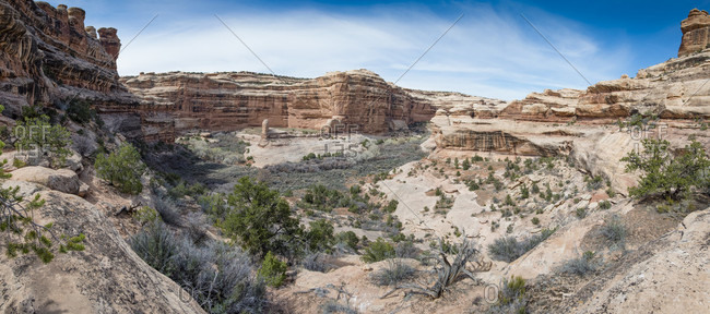 View from Sheiks Canyon into Grand Gulch, Bears Ears National Monument, Utah, USA