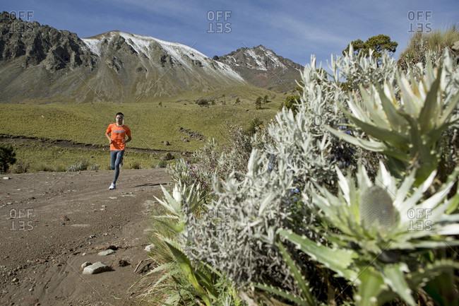 Toluca, State of Mexico, Mexico - July 8, 2015: Runner training early in morning at El Nevado de Toluca volcano, near Toluca City, Mexico