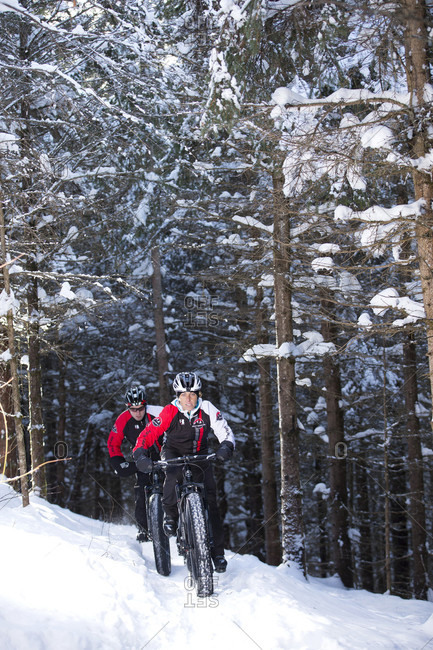 Quebec, Quebec, Canada - January 29, 2015: Rocky Mountain professional bikers during winter training session on Fat Bike in mountain trail of Quebec, Canada