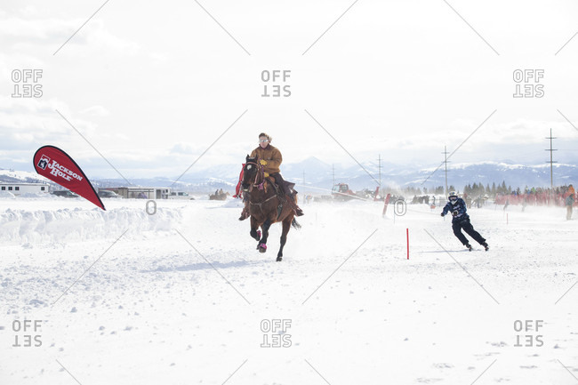 Jackson Hole, WYOMING (WY), United States - February 1, 2016: Skier races behind galloping horse at annual Skijoring competition held at Jackson Hole Mountain Resort, Teton Village, Wyoming, USA