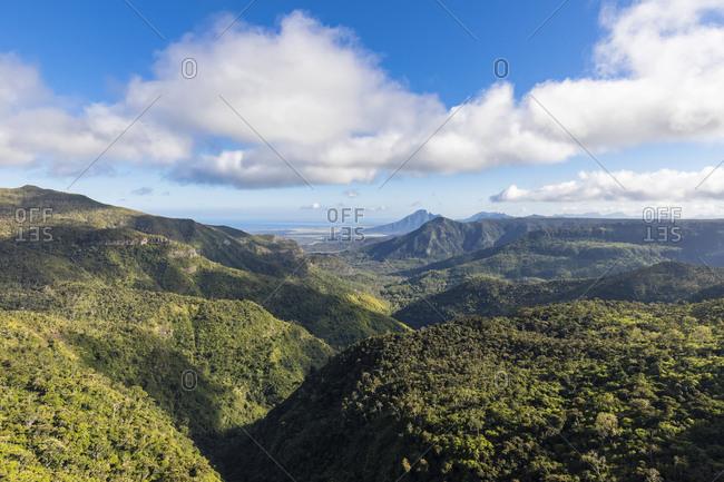 Mauritius- Black River Gorges National Park- Black River Gorges