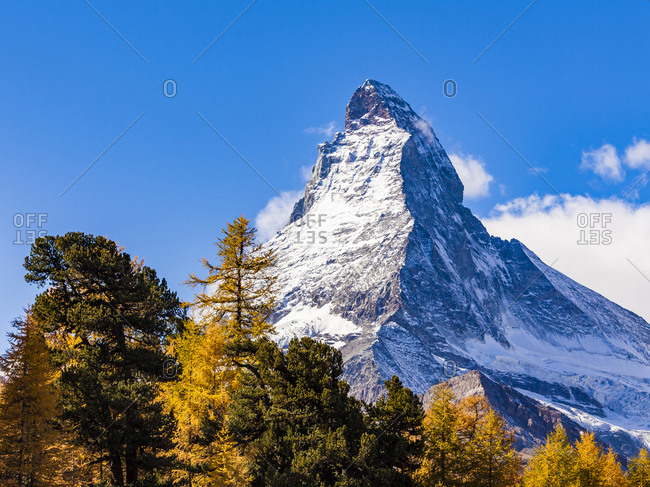 Switzerland- Valais- Zermatt- Matterhorn- trees in autumn