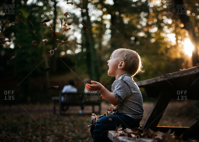 Upset toddler crying over leaves falling in the park at sunset